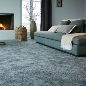 CFS excellence carpet