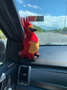 Gripper the Phoenix in the truck driving back to Bristol