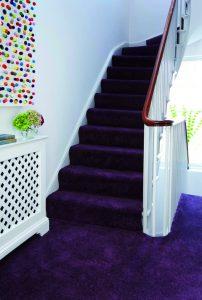 Colour Carpet - Purple